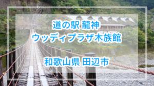 【和歌山県】道の駅龍神(ウッディプラザ木族館)詳細と吊り橋体験